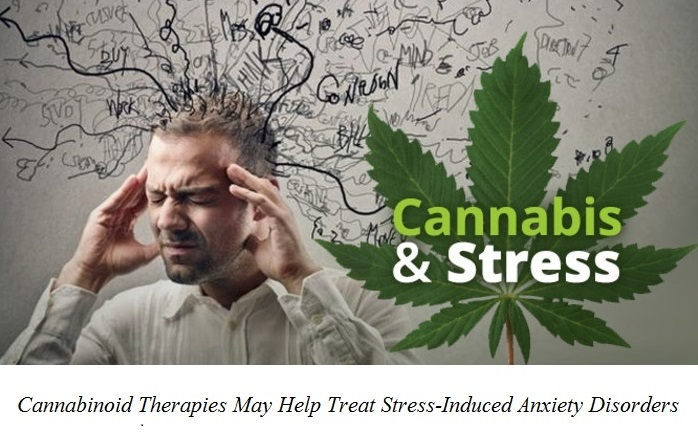 Cannabis does relieve stress, but only at low doses.