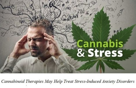 cannabis-does-relieve-stress-but-only-at-low-doses