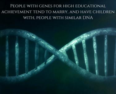 Το DNA επηρεάζει την επιλογή των συνεργατών.