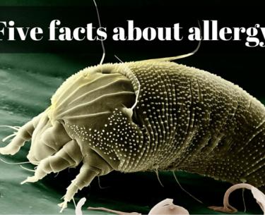 Πέντε γεγονότα σχετικά με την αλλεργία