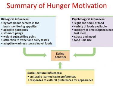 Κίνητρο Πείνας