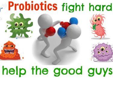 Τα Οφέλη για την Υγεία των Προβιοτικών