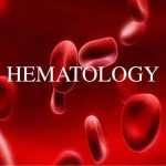 Dr Ioanna Michail – Hematoly Consultant (6)