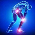 Orthopaedic Surgery (1)